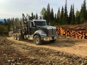 Driver Shortage? Advantage: Log Hauling Industry,