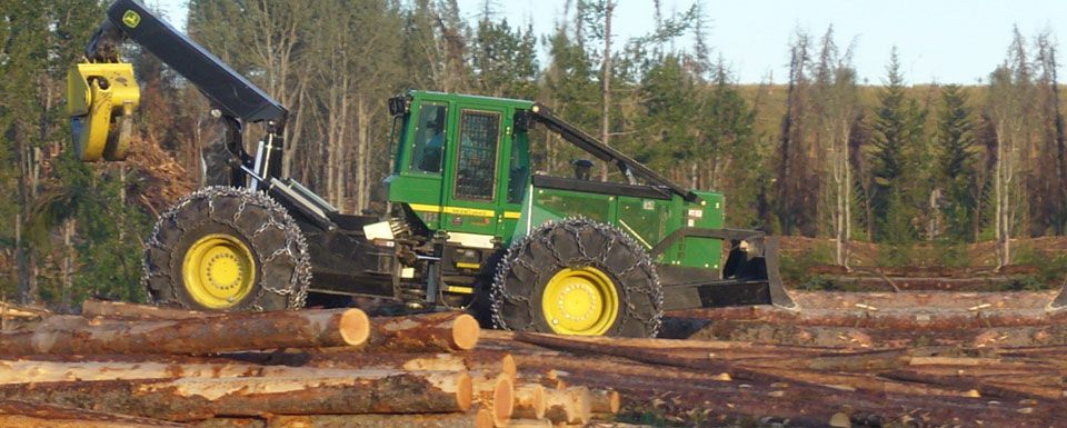 logging machinery driving over logs