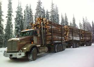 logging truck in the snow